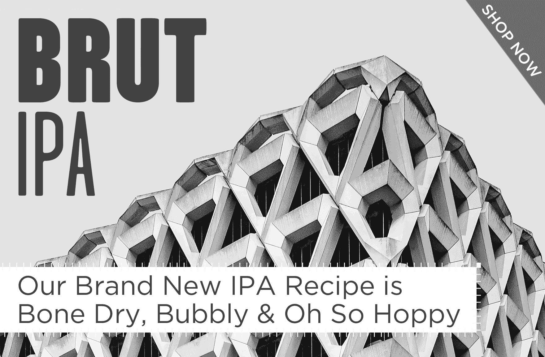 Brut IPA - New Beer Making Kit from Brooklyn Brew Shop