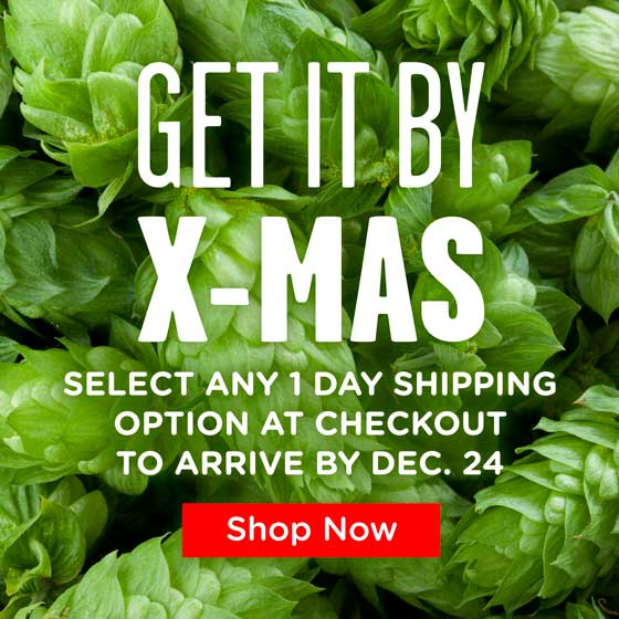 Get it by Christmas: Select Any 1 Day Shipping Option at Checkout