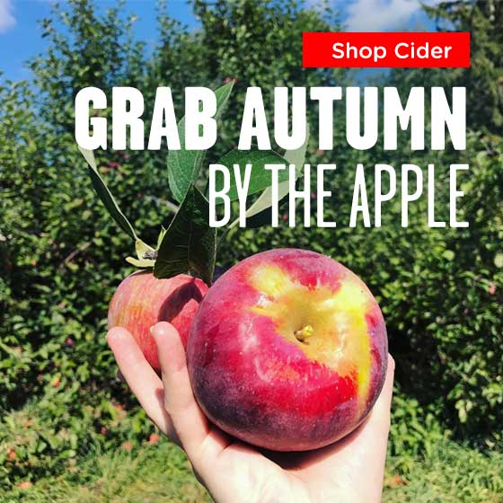 Hard Cider Kits: Grab Autumn by the Apple