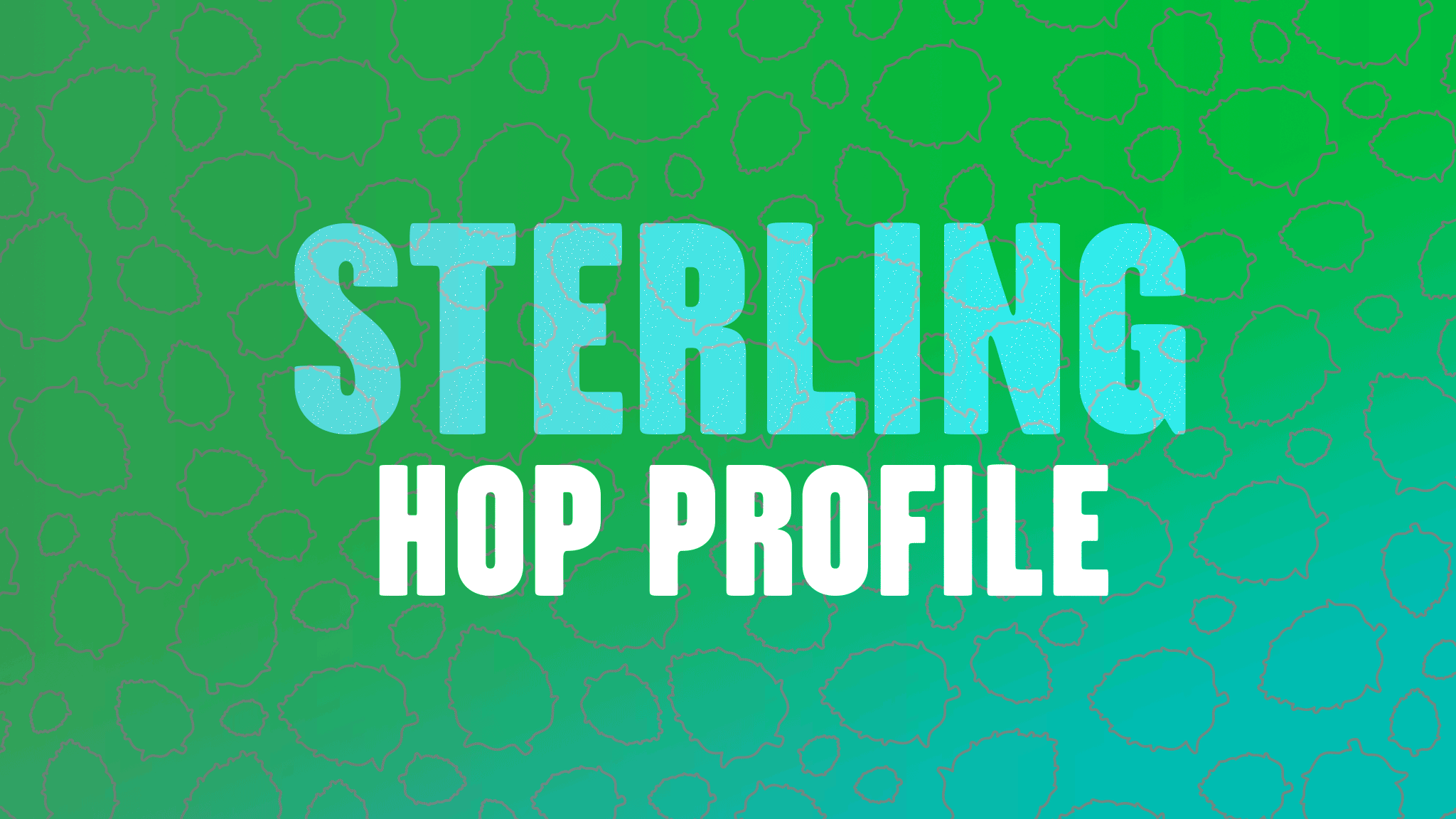 Hop Profile: Sterling