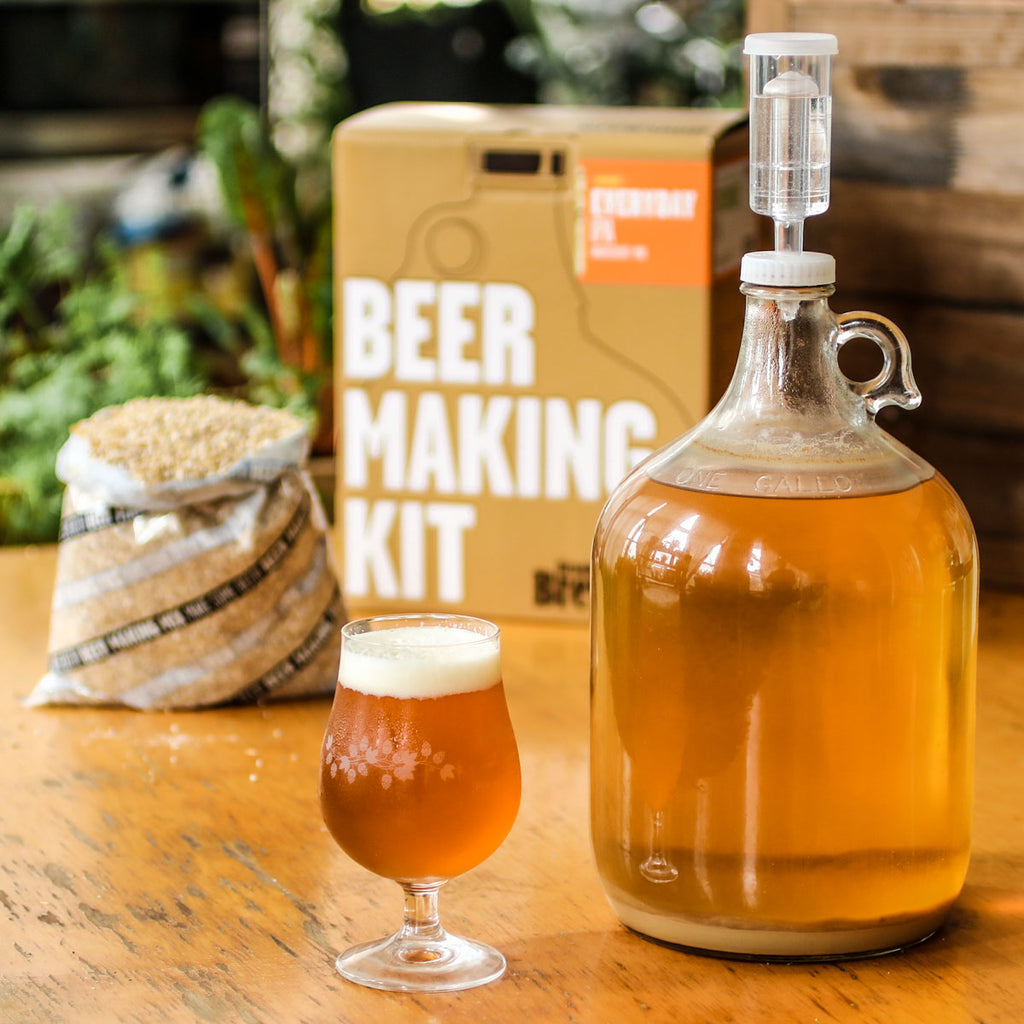 Everyday IPA Beer Making Kit with Glass of Craft Beer Made at Home and Malted Barley
