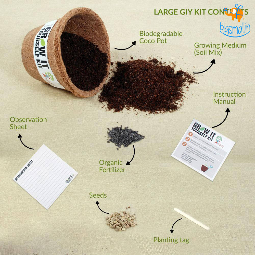 Vegetable Large Grow It Yourself Kit