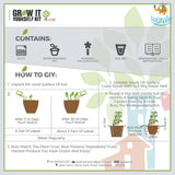Grow It Yourself Kit - Flower Garden (Pack Of 4)