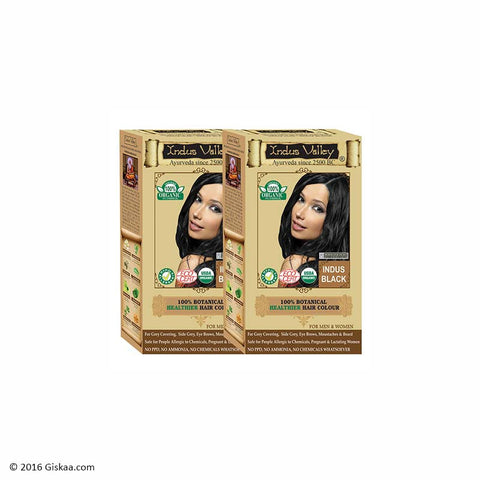 Indus Valley Botanical Indus Black Hair Colour One Touch Pack Set of 2