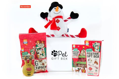 The Christmas Gift Box For Dogs