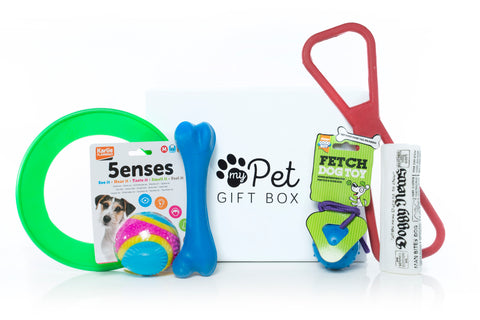 The Dog Toys Gift Box