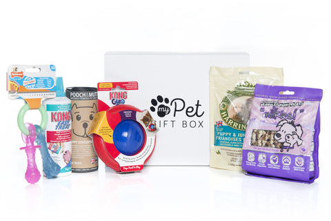 The Puppy Treat Gift Box
