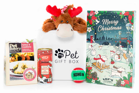 The Limited Edition Luxury Christmas Gift Box For Dogs