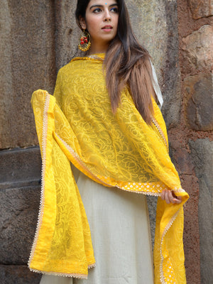 Bahaar Dupatta, a hand embroidered, statement dupatta from our designer collection of dupattas and clothing for women.