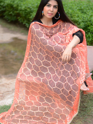 Chandni Dupatta, a hand embroidered, statement dupatta from our designer collection of dupattas and clothing for women online.