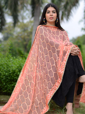 Chandni Dupatta, a hand embroidered, statement dupatta from our latest designer collection of dupattas and clothing for women.