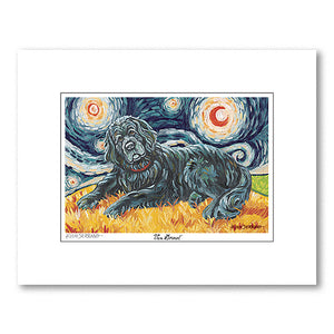 Newfoundland Starry Night Matted Print
