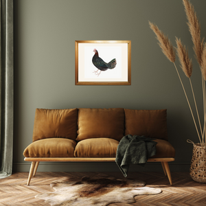 Olof Rudbeck Swedish Farm Hen Bird Print