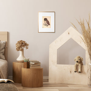 framed little owl wall art