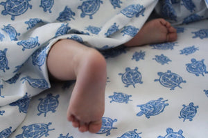 baby feet with turtle blue bedding