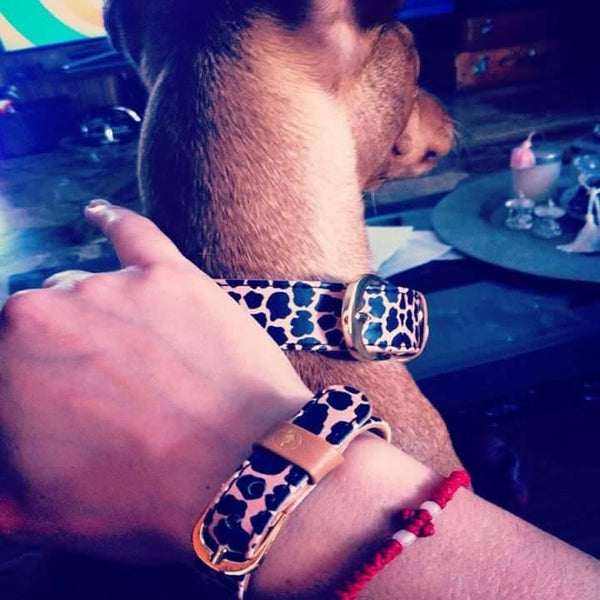 "The ""Jungle"" Dog Collar - ArgusCollar"
