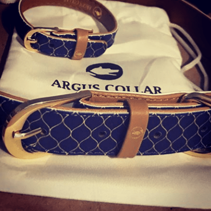 "The ""Gentleman"" Dog Collar - ArgusCollar"