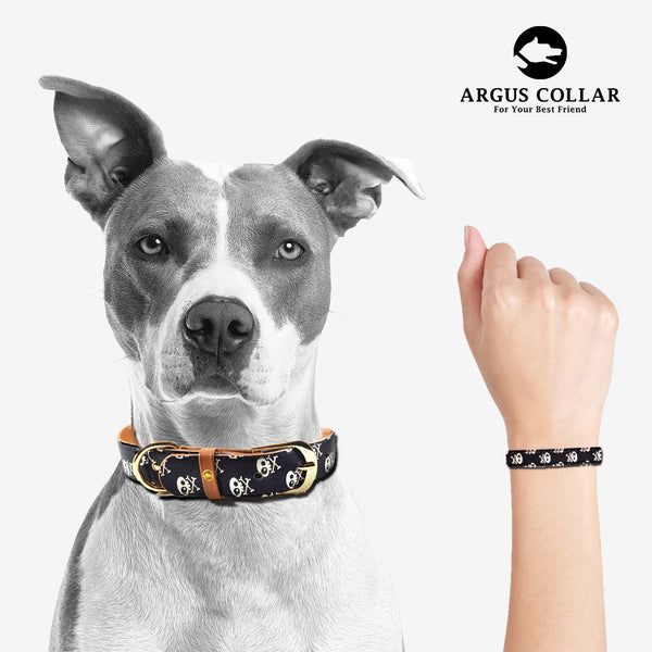 "The ""Skull & Bones"" Dog Collar - ArgusCollar"