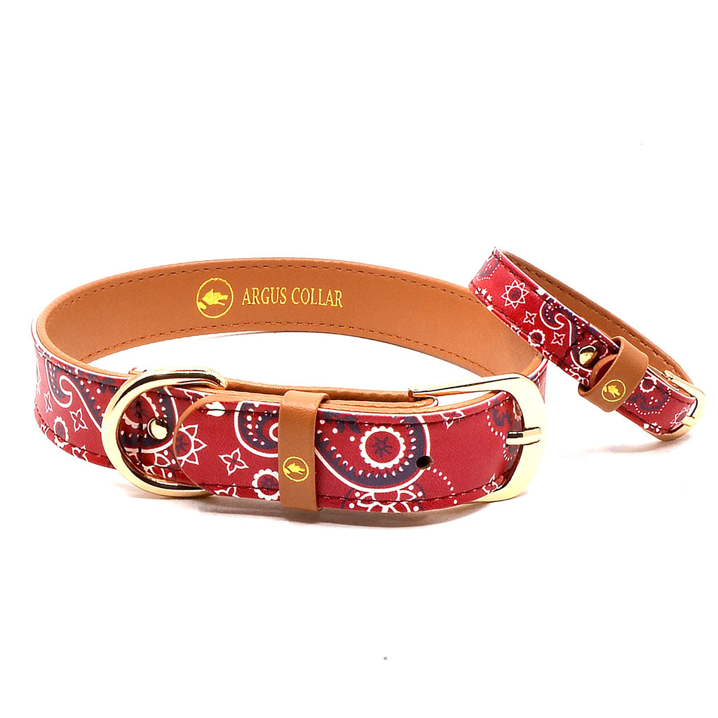 "The ""Bandana Classic"" Dog Collar - ArgusCollar"