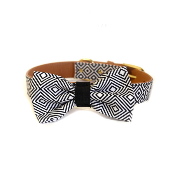 "The ""BW Squary"" Dog Bow Tie - ArgusCollar"