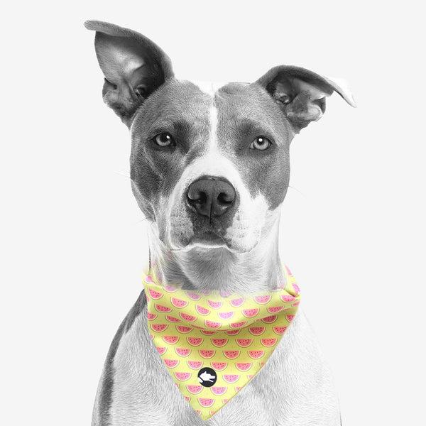 "The ""Watermelon"" Dog Bandana"