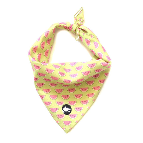 "The ""Watermelon"" Dog Bandana - ArgusCollar"