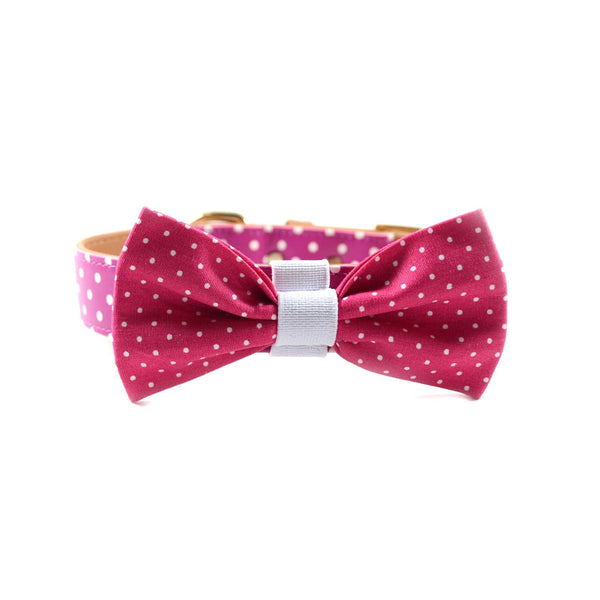 "The ""Pinky Dot"" Dog Bow Tie"