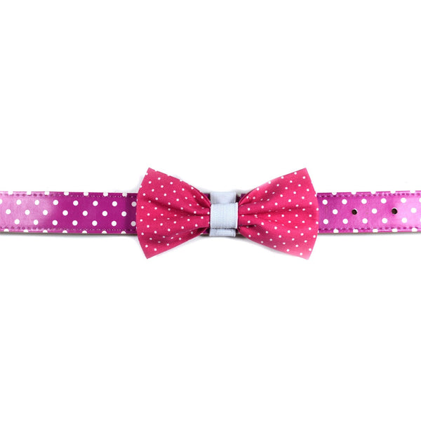 "The ""Pinky Dot"" Dog Bow Tie - ArgusCollar"