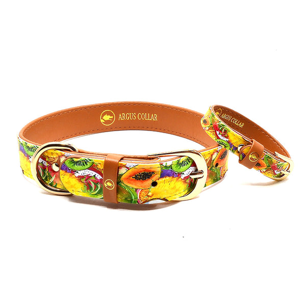 "The ""Tutti Frutti"" Dog Collar - ArgusCollar"