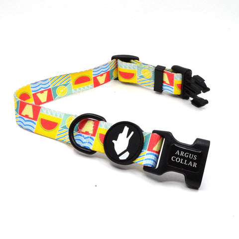"""The Watermelon Dog Collar"" - ArgusCollar"