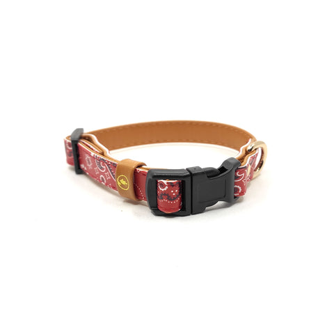 "The ""Bandana Classic"" Cat Collar - ArgusCollar"