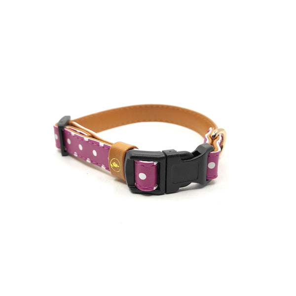"The ""Pinky Dot"" Cat Collar - ArgusCollar"