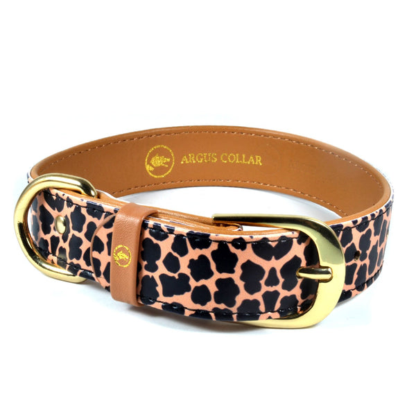 "The single ""Jungle"" Collar - ArgusCollar"