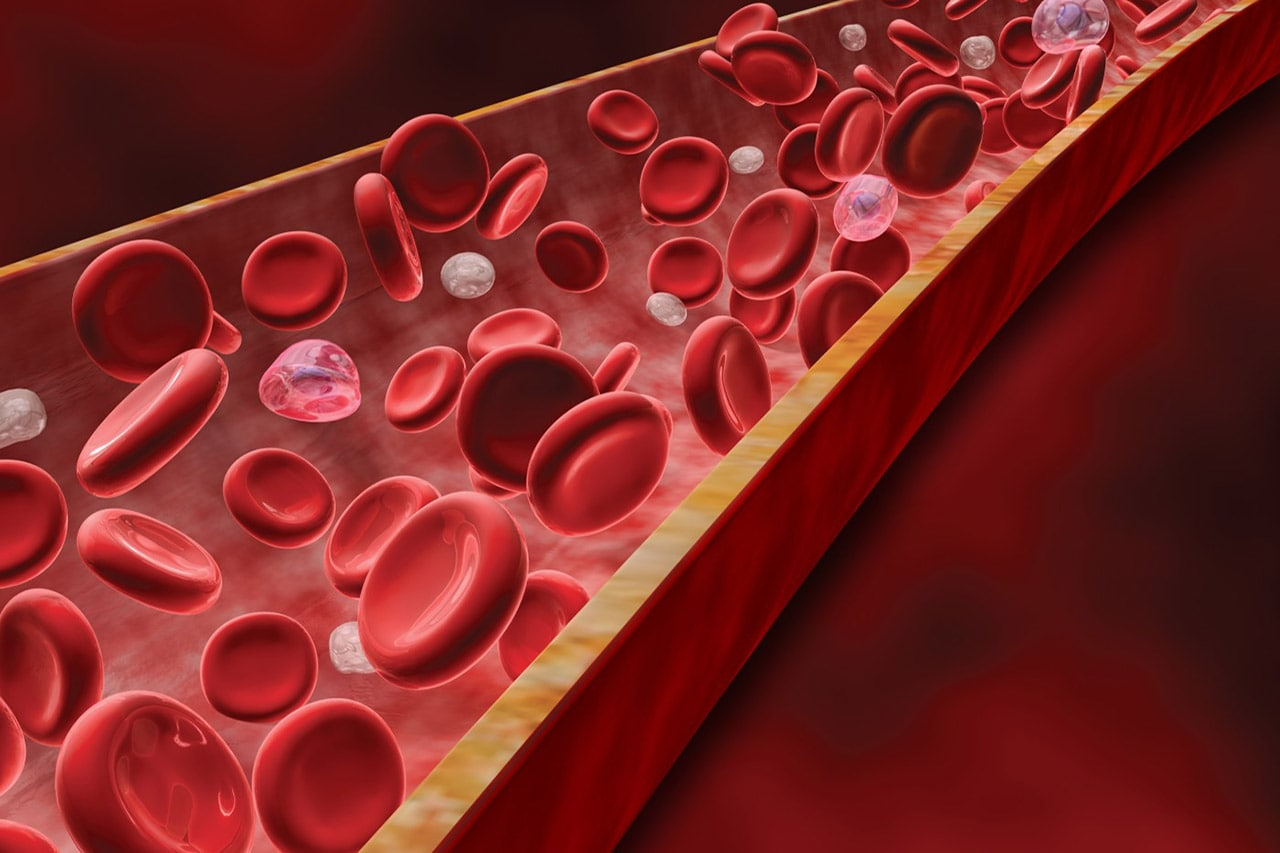 Blood Clots  6 Things You Need to Know
