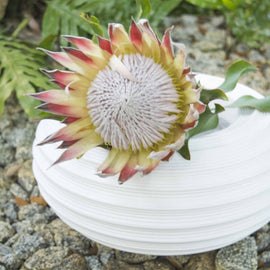 "ECLIPSE PLANTER (18"") - www.zenbetterliving.com"
