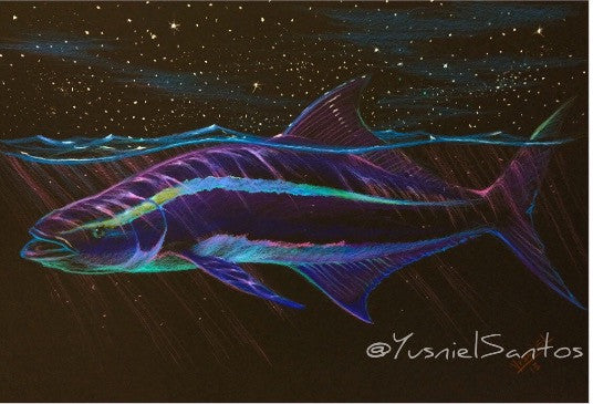 Moonlight Series - Cobia