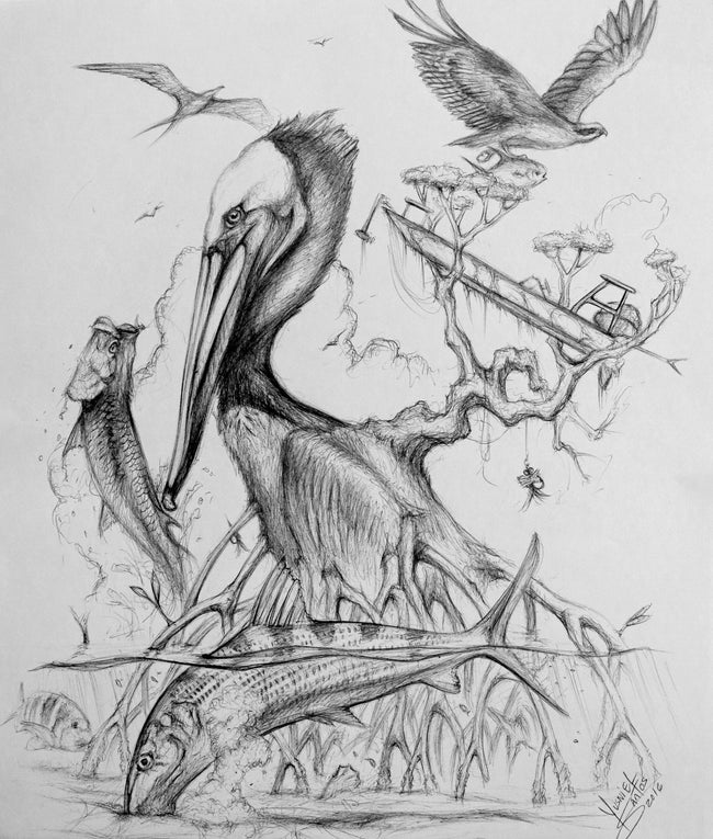 Original Drawing - Pelican
