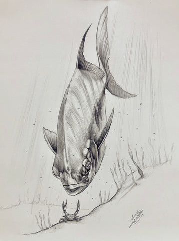 Original Drawing - Salmon
