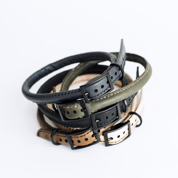 Hammered Leatherworks The Great Dog Collar