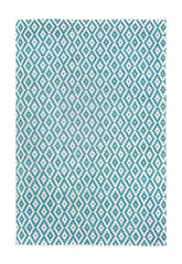 DP 53  Turquoise and Light Cream Rug