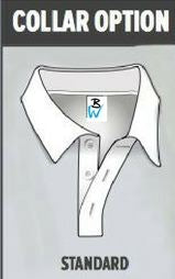 Collar Option
