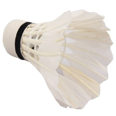 Light up Shuttlecocks with LED Lamp for Badminton in poor light (pack of 4)