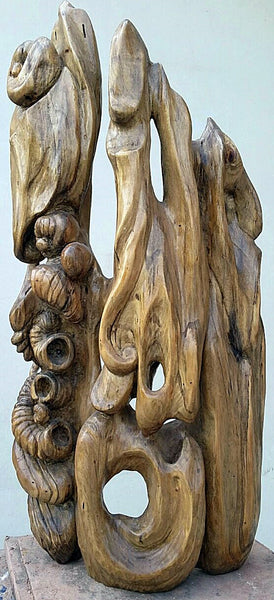 Spirit of Tree I, Dead wood sculpture by Abbas Shah (22 x 10 x 4 in)