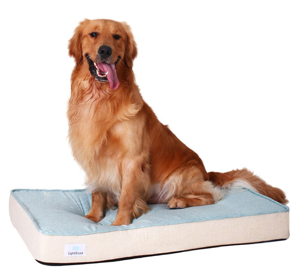 Mary-Ann Orthopedic Bed