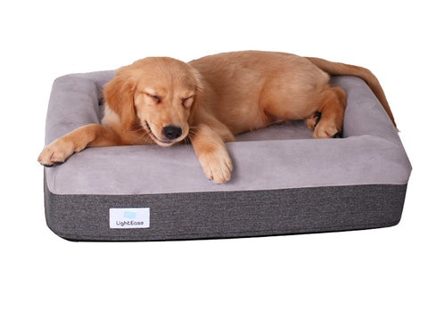Bonia Boxy Orthopedic Bed