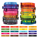 Cara Personalized Dog Collar