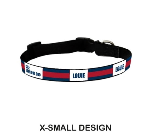 Jogger Personalized Pet Collar