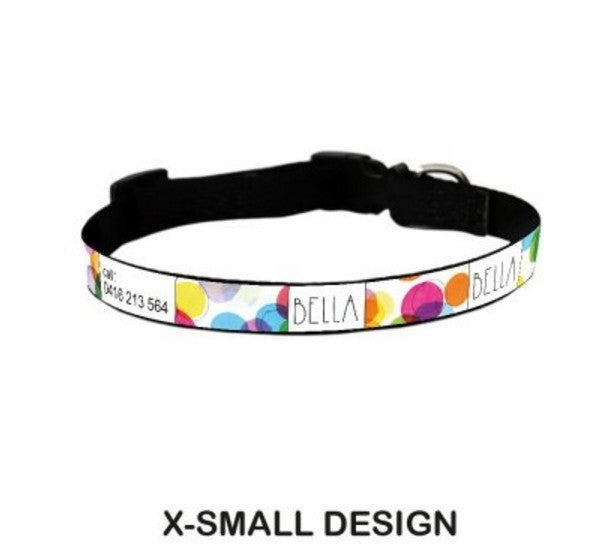 Colors Pop Personalized Pet Collar