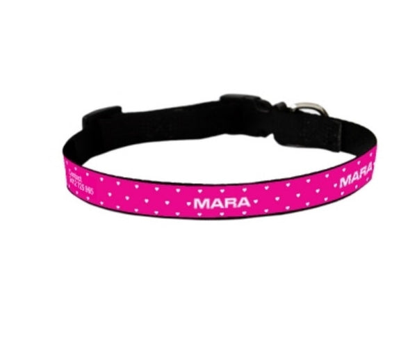 Coralis Personalized Pet Collar