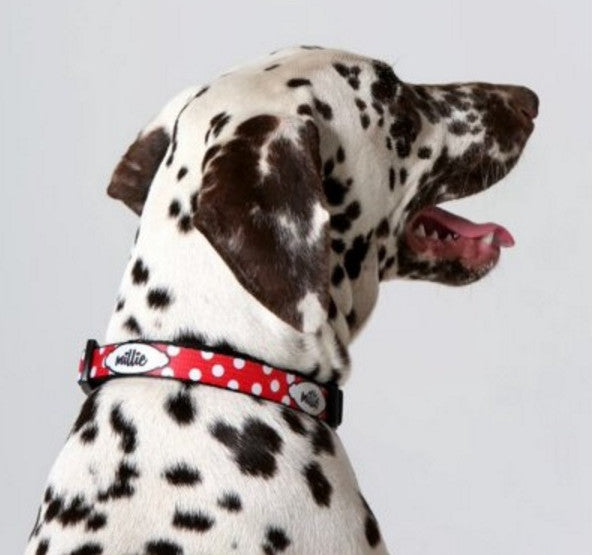 Mickey Personalized Pet Collar